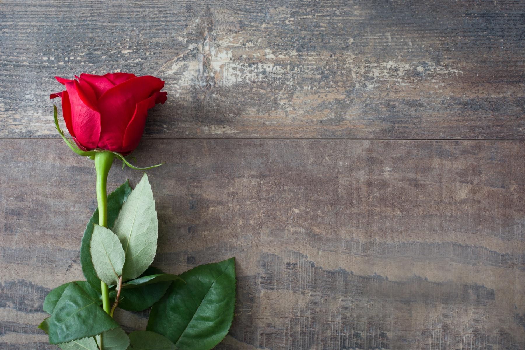 tipologie di amore in psicologia